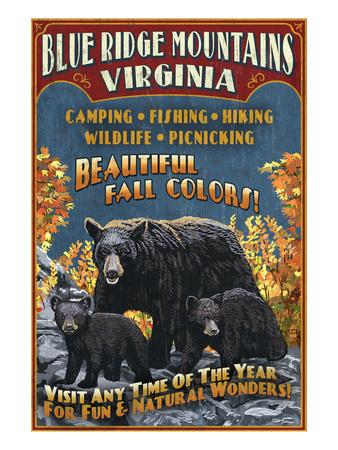 Blue Ridge Mountains, Virginia - Black Bear Family Prints by  Lantern Press