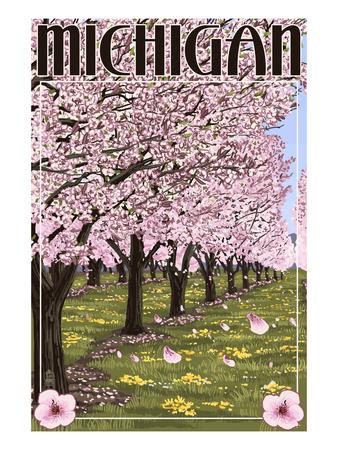 Michigan - Cherry Orchard in Blossom Print by  Lantern Press