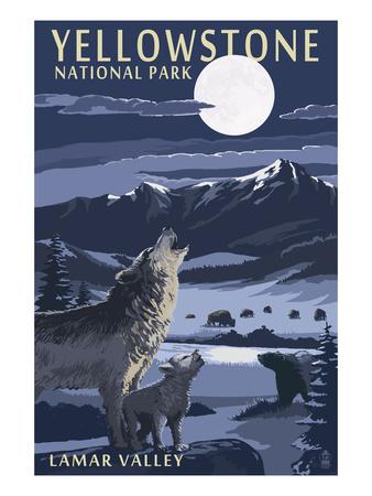 Lamar Valley Scene, Yellowstone National Park Print by  Lantern Press