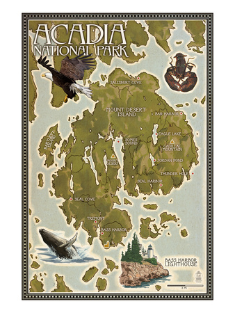 Acadia National Park, Maine - Map Poster von  Lantern Press
