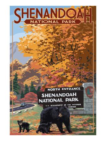 Shenandoah National Park, Virginia - Black Bear and Cubs at Entrance Posters by  Lantern Press