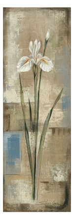 Spring Grace IV Posters by Silvia Vassileva