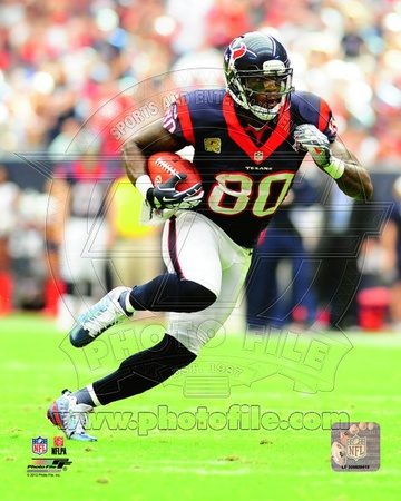 Andre Johnson 2012 Action Photo