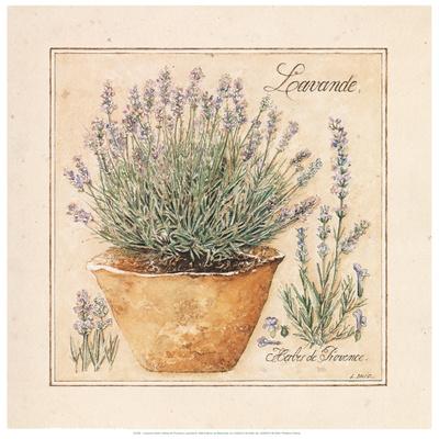 Herbes de Provence II Posters by Laurence David