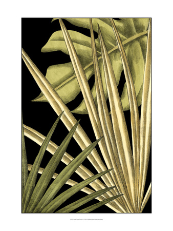 Rustic Tropical Leaves IV Prints by Ethan Harper