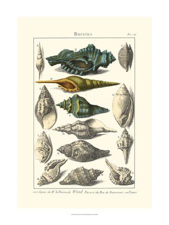 Seaside Treasures I Prints by  Dezallier