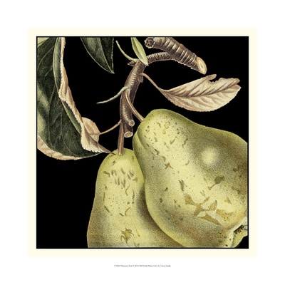 Dramatic Pear Prints by  Vision Studio