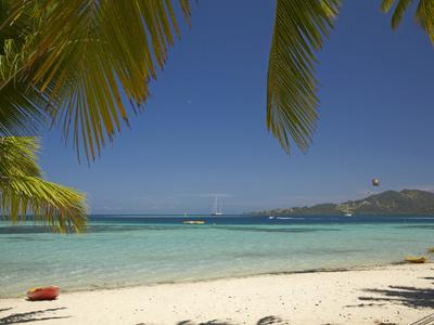 Beach and Palm Trees, Plantation Island Resort, Malolo Lailai Island, Mamanuca Islands, Fiji Photographic Print by David Wall
