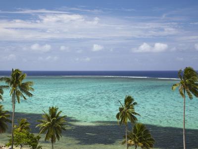 Palm Trees and Coral Reef, Crusoe's Retreat, Coral Coast, Viti Levu, Fiji, South Pacific Photographic Print by David Wall