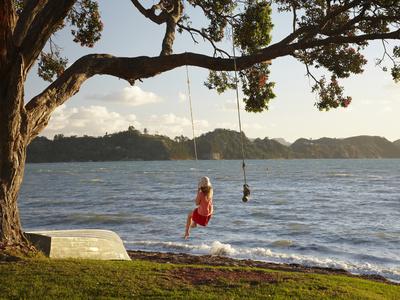 Young Girl on Rope Swing under Pohutukawa Tree, Oamaru Bay, Coromandel, North Island, New Zealand Photographic Print by David Wall