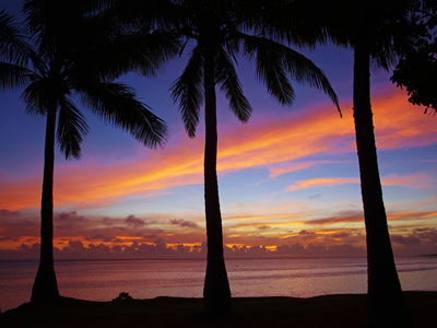 Sunset and Palm Trees, Coral Coast, Viti Levu, Fiji, South Pacific Photographic Print by David Wall