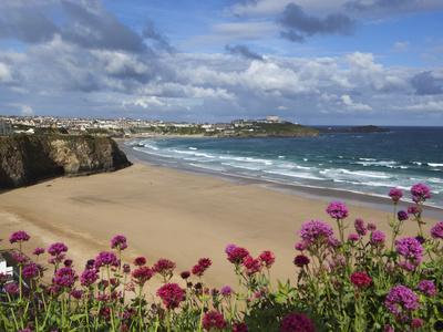 Great Western Beach, Newquay, Cornwall, England Stampa fotografica di Stuart Black
