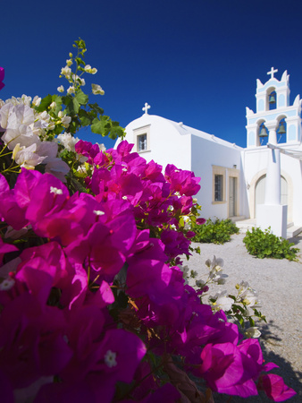 Greek Church and Flowers, Santorini, Cyclades, Greek Islands, Greece, Europe Photographic Print by Sakis Papadopoulos