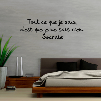 Tout ce que je sais c est que je ne sais rien Wall Decal by  Socrate
