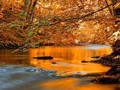 Fluss der Träume Fotografie-Druck von Philippe Sainte-Laudy