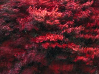 Red Splash Lámina fotográfica por Art Wolfe