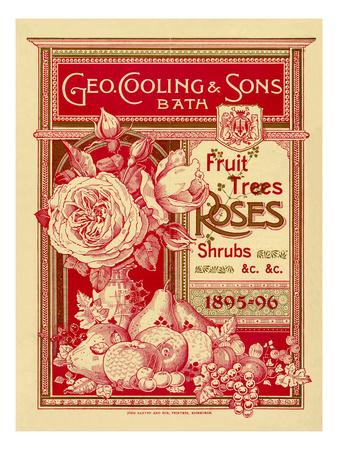 Fruit Trees, Rose and Shrubs Premium Giclee Print by George Cooling & Sons