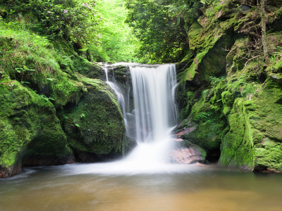 Water in a Forest, Geroldsau Waterfall, Black Forest, Baden-Wurttemberg, Germany Fotoprint av Panoramic Images,
