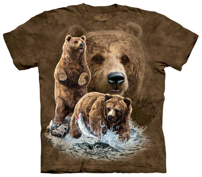 Find 10 Brown Bear T-shirts