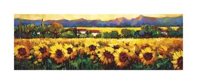 Sweeping Fields of Sunflowers Stampa giclée di Nancy O'toole