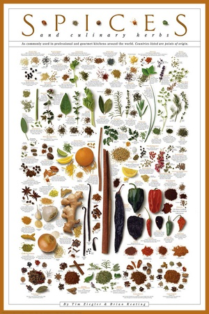 Spices and Culinary Herbs Sanatsal Reprodüksiyon