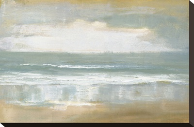 Shoreline Stretched Canvas Print by Caroline Gold