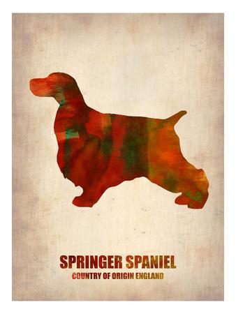 Springer Spaniel Poster Prints by  NaxArt