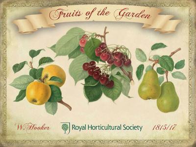 Fruits Of The Garden Tin Sign