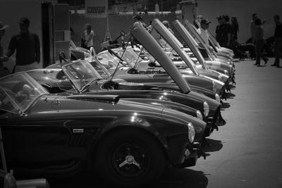 427 Cobras Photo by  NaxArt