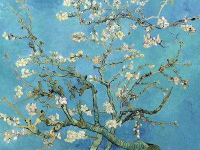 Blomstrende mandeltræ, Saint-Rémy, ca.1890 Kunsttryk