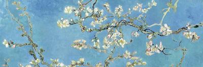 Çiçekli Badem Dalları, San Remy, c.1890 (Almond Branches in Bloom, San Remy, c.1890) Sanatsal Reprodüksiyon