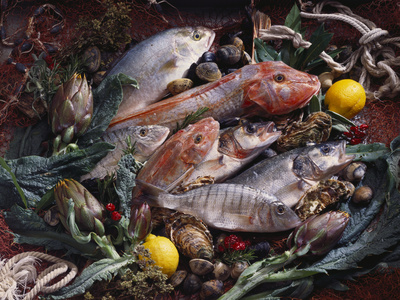 Still Life with Fish, Shellfish and Vegetables Photographic Print by Klaus P. Exner