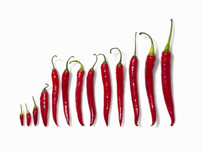 Fresh Red Chilli Peppers Photographic Print