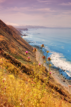 Sonoma Coast Mist Photographic Print by Vincent James