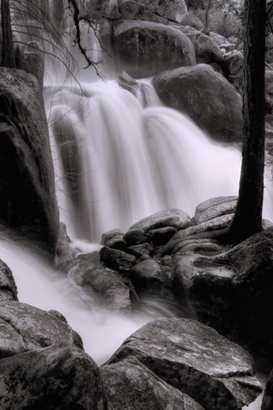 In the Cascades Photographic Print by Vincent James