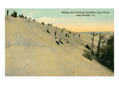 Sandhills, Cape Henry, Virginia Poster