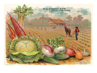 Vegetables, Old Fashioned Farm Posters