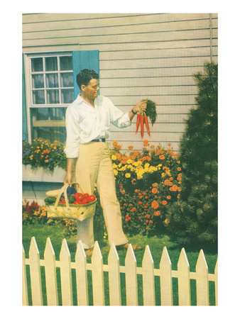 Man with Carrots in Yard Prints