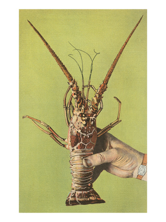 Hand Holding Lobster Posters