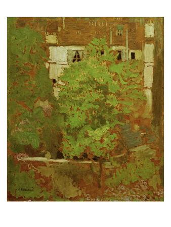 Chestnut Trees in Rue Truffaut (in the 17th Arrondissement in Paris), c.1900 Giclee Print by Edouard Vuillard
