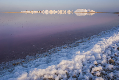 Saline Plains, a Salt Mine in Bonaire, ABC Islands, Netherlands Antilles, Caribbean Photographic Print by Michael Runkel