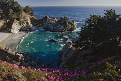 Mcway Waterfall and Pink Flowers Overlook a Cove Near Big Sur Fotografisk tryk af Ben Horton