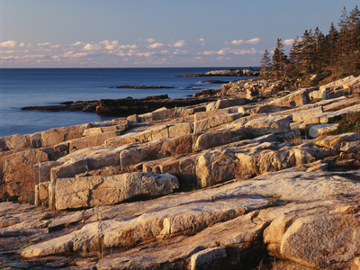 Mt Desert Island, View of Rocks with Forest, Acadia National Park, Maine, USA Photographic Print by Adam Jones