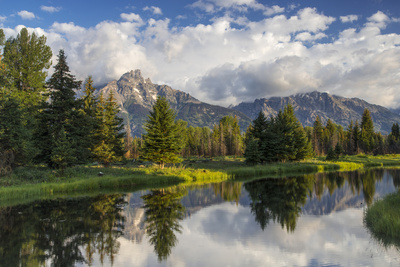 Teton Mountains in Schwabacher Landing, Snake River, Grand Teton National Park, Wyoming, USA summer scenes photo poster by Chuck Haney