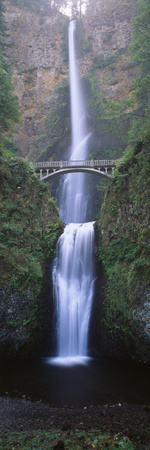 View of Multnomah Falls in Columbia Gorge, Oregon, USA 写真プリント : ウォルター・ビビコウ
