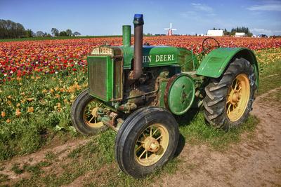Old John Deere, Wooden Shoe Tulip Farm, Woodburn, Oregon, USA Photographic Print by Rick A. Brown