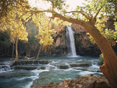 Havasu Falls Kunsttryk