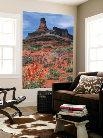 Rock Formation, Dead Horse Point State Park, Canyonlands National Park, Utah, USA Poster by Paul Souders