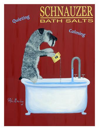 Schnauzer Bath Salts Giclee Print by Ken Bailey