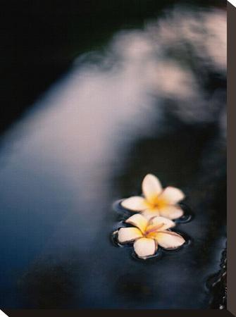 Tranquil Fountain, Kuta Bali Stretched Canvas Print by Byron Yu